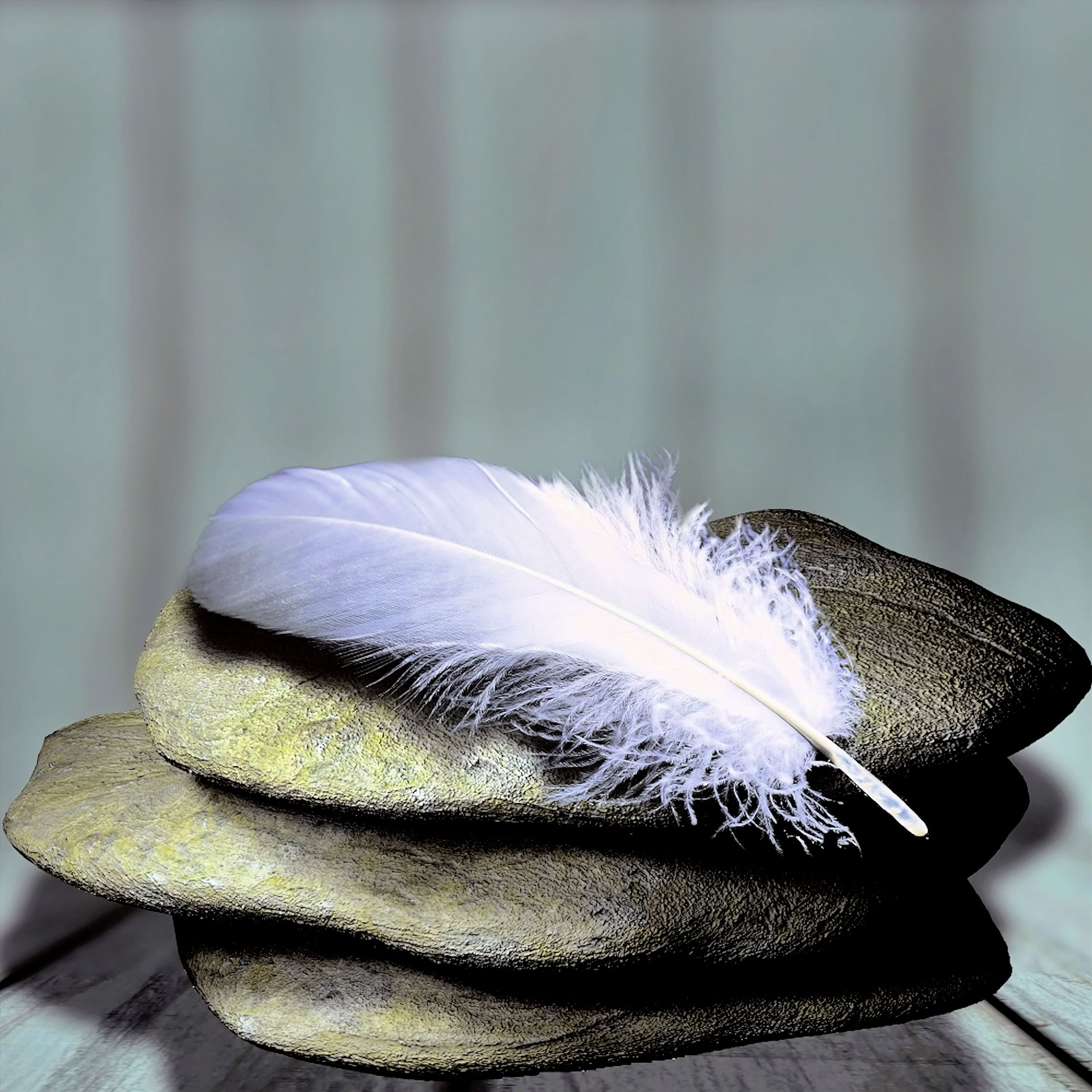 feather stone